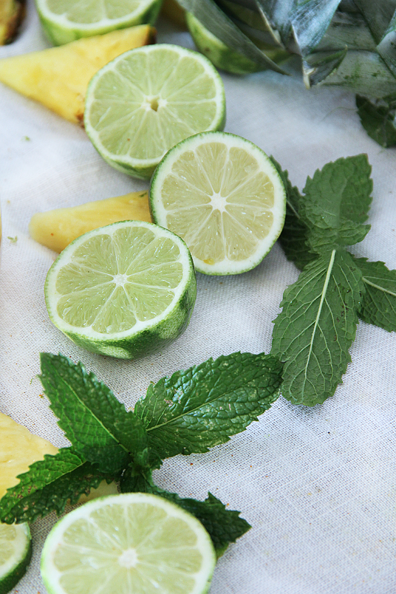 lime and mint ingredients