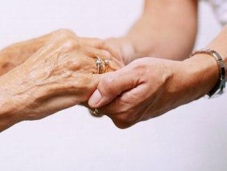 elderly benefits of calcium to plants