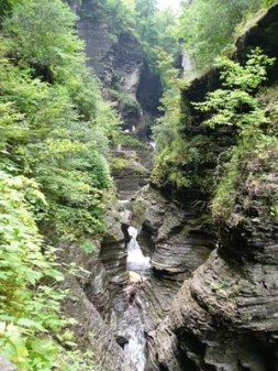 More of Watkins Glen