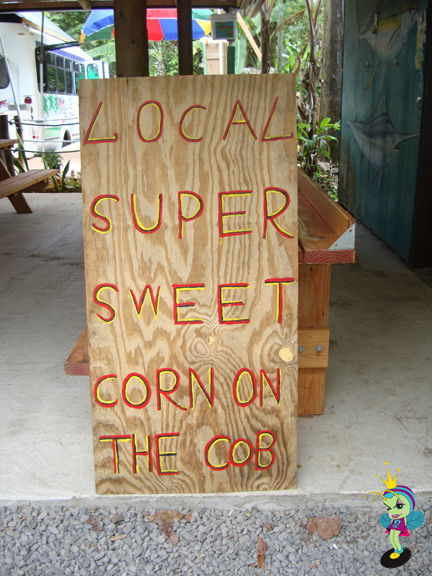 Local Super Sweet Corn on the Cob