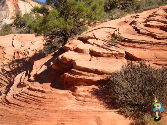 beautiful Zion rock formations and colors
