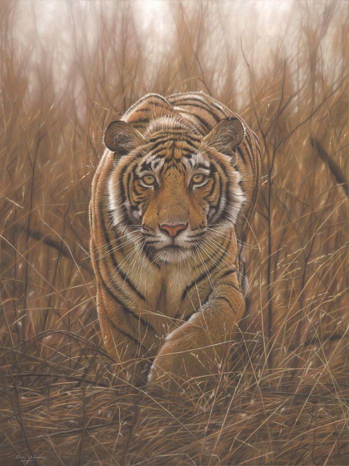 Eric-Wilson-wildlife3