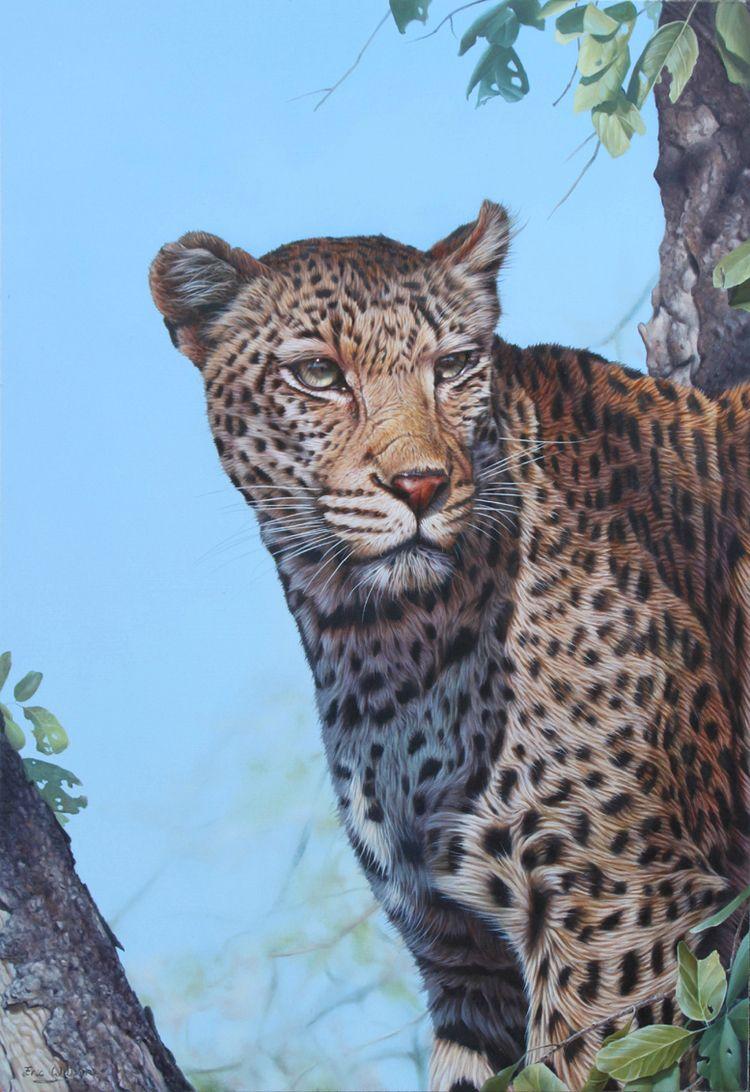 Eric-Wilson-wildlife5