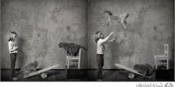 أب يحول علاقة طفلته بقططها إلى مغامرة