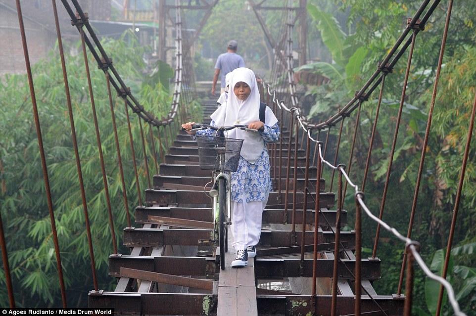 جسر معلق 5