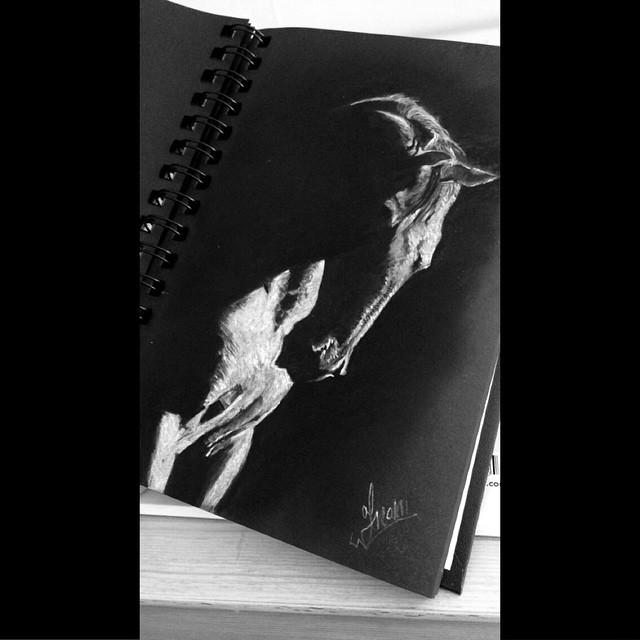 لوحات رسم تشكيل خيول