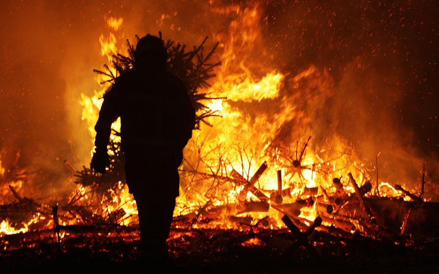 حرق أشجار الميلاد