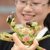 fashion show for crustaceans