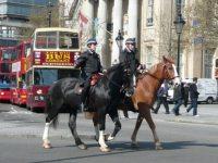 الشرطة الخيالة