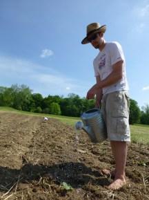 Watering the Tender Seedlings