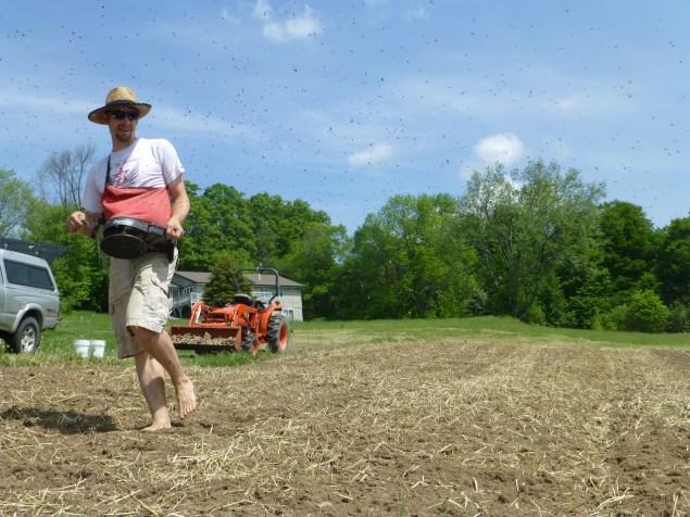 Brodcasting Buckwheat