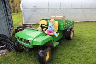 Allie Gator - the new farm work horse