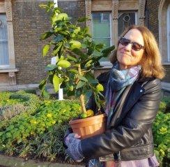 Abundance-London-Flag-Pole-Garden 2017 Awards