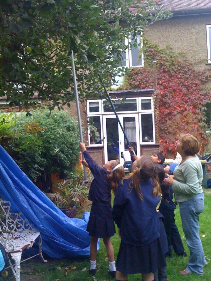 Abundance London school-picking