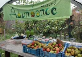 Abundance Jam Making Stall
