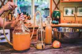 bottling home brew home-made cider -abundance