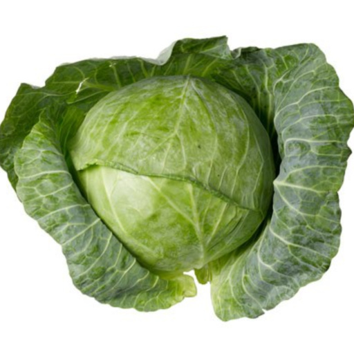 Fresh Organic Cabbage Vegetable