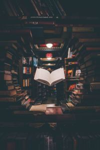 Abundant Content Updates | The Last Bookstore, Los Angeles | Photo by Jaredd Craig on Unsplash | Abundant Content