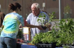 12404_Gardeners-Market-plant-sale-6-12-14-159.jpg
