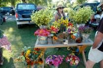 12457_Vibrant-Flowers-LFM.jpg