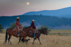 12586_Cowgirl-Meat-Co-Resize.png