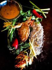Feast pheasant - recent