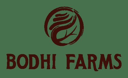 BODHI_Logo_1_Final