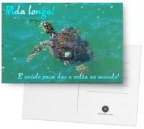 Sabia que tartarugas podem viver mais de cem anos? Diga a alguém triste ou doentinho que tenha vida longa e alegrias!