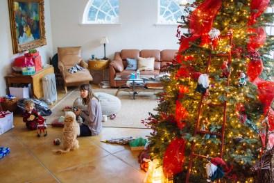 christmas-28-of-35
