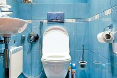 ремонт туалета фото дизайн 1