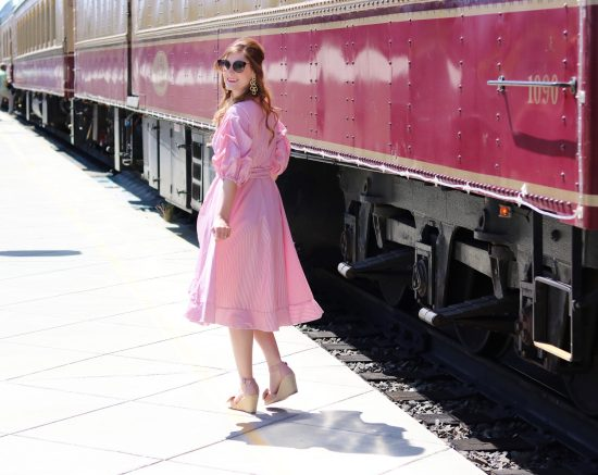 Napa valley wine train tours | napa wine train | napa wine train trips | napa wine train outfits | napa wine train lunches | napa wine train vineyard | napa valley | napa valley outfit | things to dot in napa valley | what to wear in napa valley | Shein Surplice Wrap Flounce Dip Hem Pinstripe Dress
