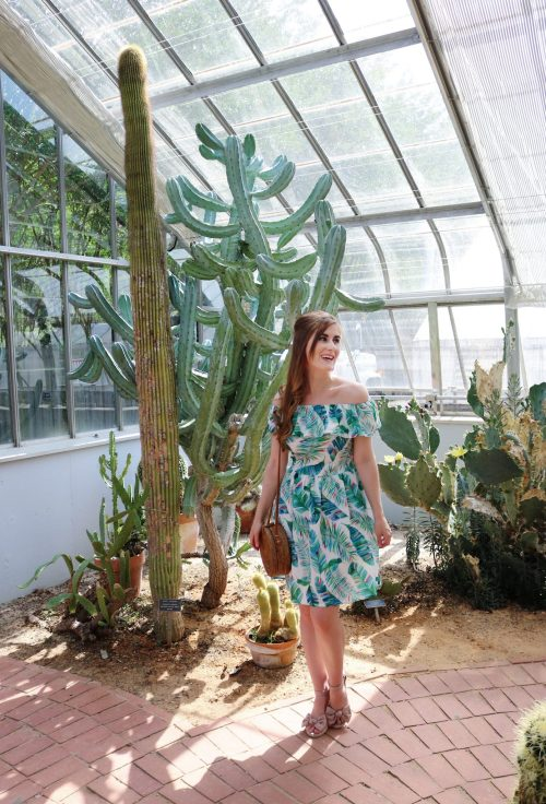 Birmingham Botanical Gardens | palm leaf dress outfit | Birmingham, Alabama | what to do in Birmingham, Al | Birmingham, al botanical gardens | summer outfit ideas | summer date ideas | Birmingham, Alabama date ideas | botanical gardens