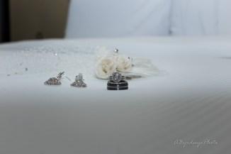 Toledo Intimate Wedding Reynolds Reception Hall_-53