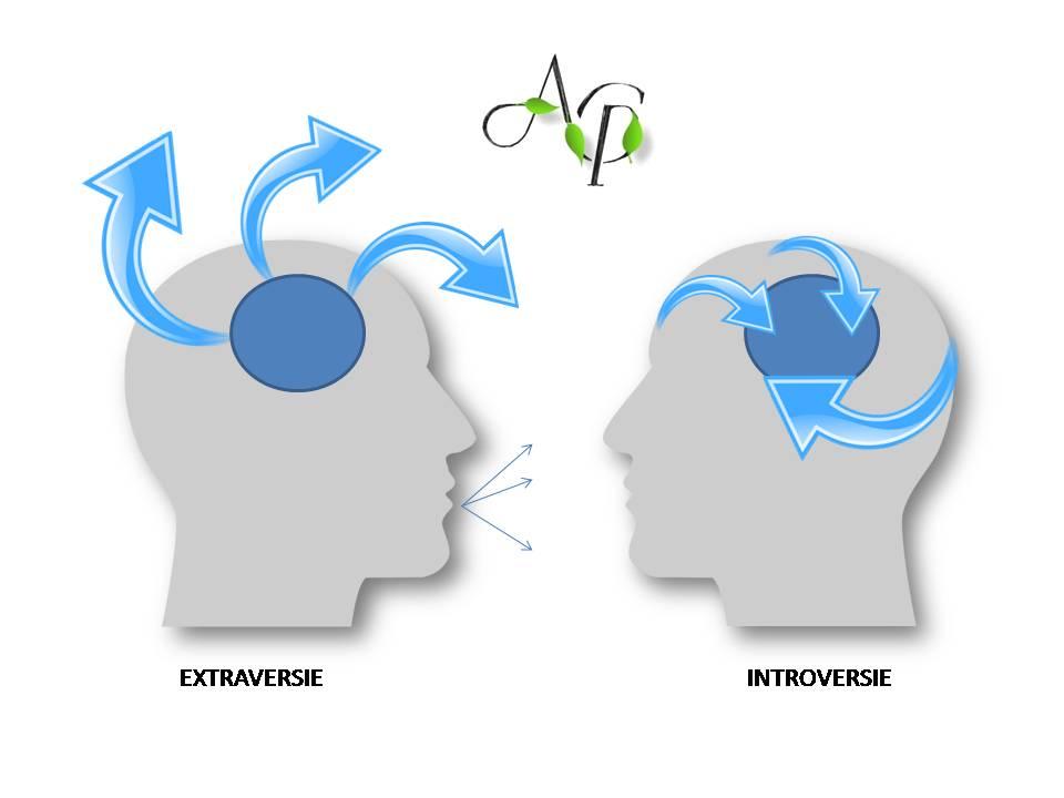 alt Extravert si Introvert