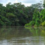 Lago do Amapá tem 3.160 anos e foi formado pelas mudanças climáticas ocorridas no Acre