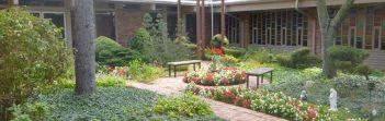 cropped-courtyard.jpg