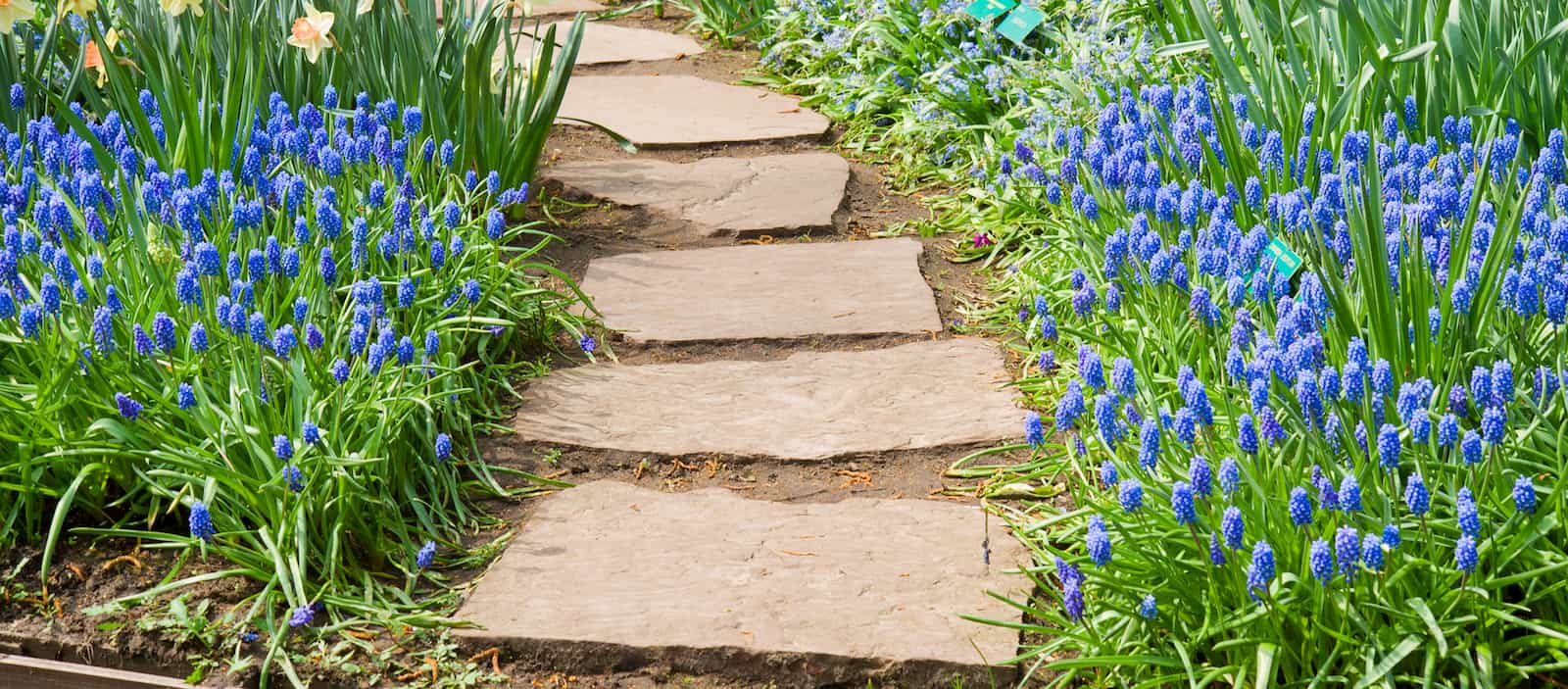 Garden Path Ideas | Mulch | Gravel | Wooden | Crazy Paving on Patio And Path Ideas  id=30837