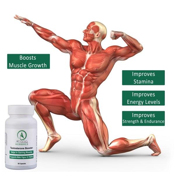 Acacia Herbals Testosterone Booster 60 Capsules-1158