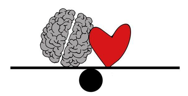 brain, head, psychology