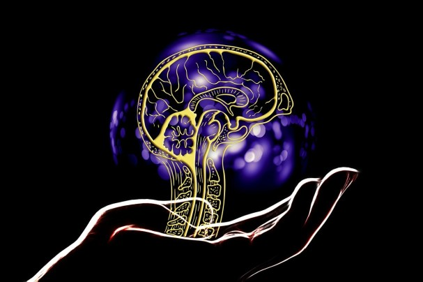 artificial intelligence, brain, hand