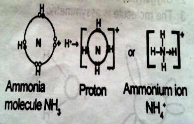 formation-of-ammonium-ion-by-co-ionic-bonding
