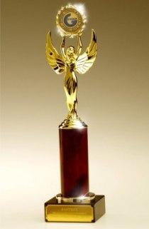 Академия ДПО получила Золотую медаль Международного конкурса «Лучшие товары и услуги - ГЕММА». Качество образовательных услуг Академии ДПО признано на международном уровне