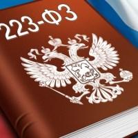 Поправки к Закону N 223-ФЗ