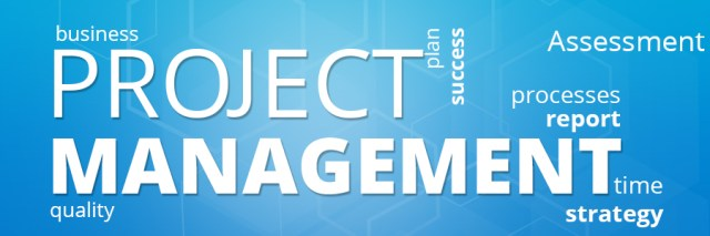management assignment help, assignment on project management,