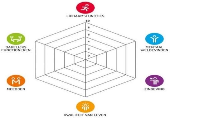 spinneweb gezondheidsdimensies