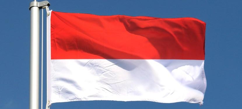 Indonésie, un archipel émergent