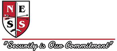 NES Solutions Academy