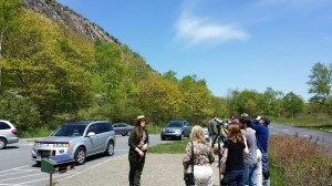 Acadia National Park Ranger Melinda McFarland speaks to visitors at the park's peregrine watch.