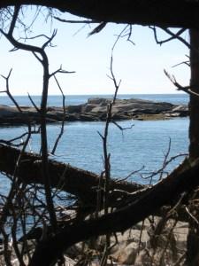 Western Ear, an island off the southern coast of Isle au Haut