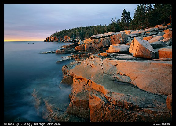 QT Luong and Otter Point in Acadia National Park, at sunrise